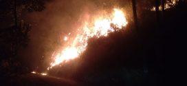 Kebakaran Lahan Kosong Merembet Ke Pemukiman Warga Jaten